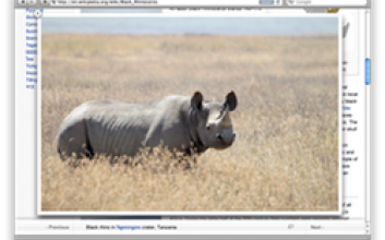 Svart noshörning på Wikipedia